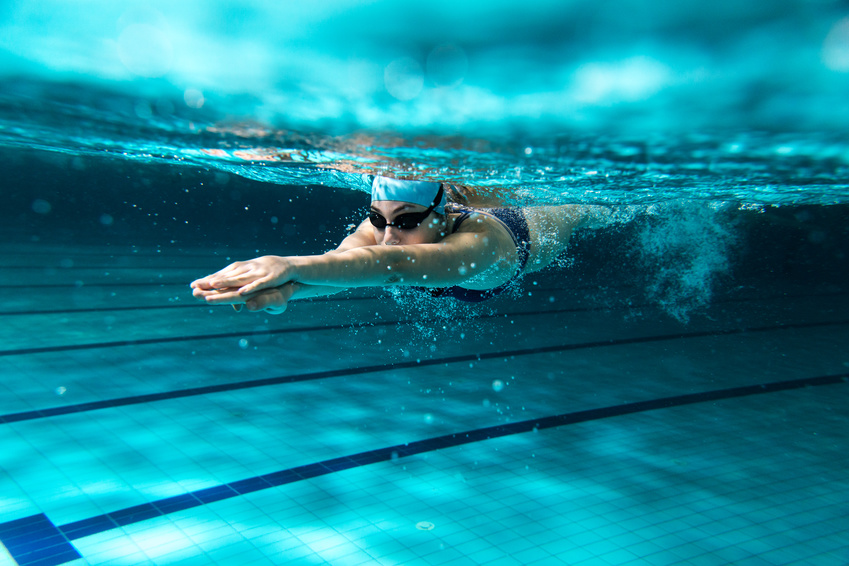 Réunion d'information sur les formations aux métiers de la natation