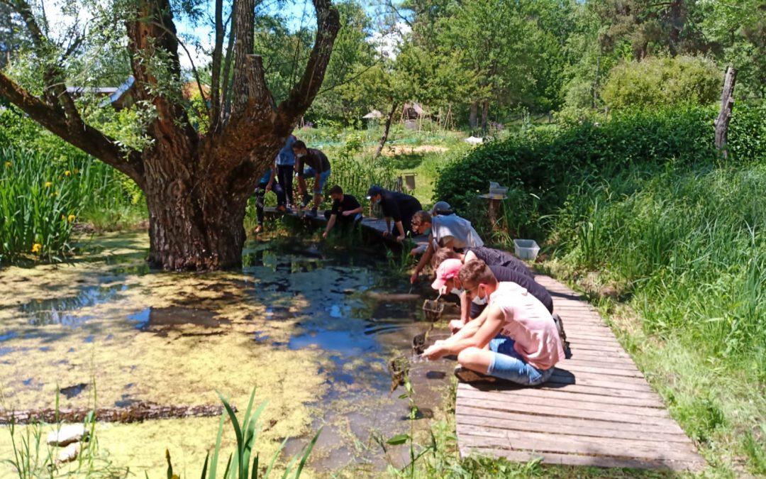 Les élèves de 2de pro au centre écologique Terre Vivante