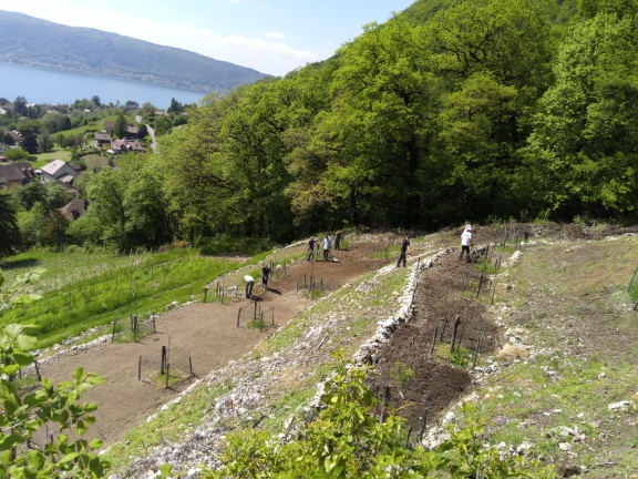 TP d'aménagements paysagers au Chateau de Menthon pour les 1ères Bac Pro